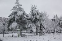 zima_5